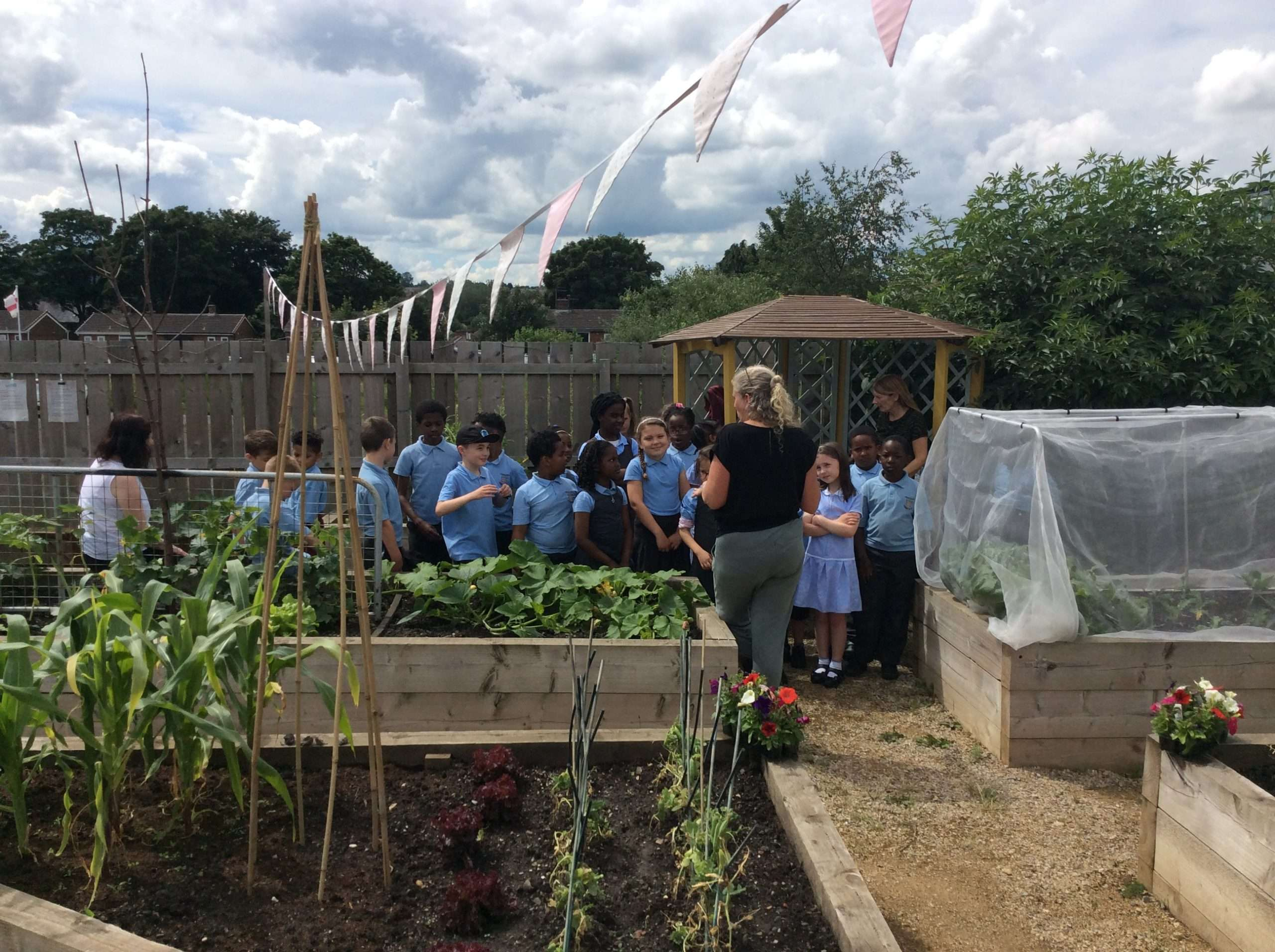 Year 3 get green fingers
